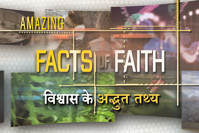 amazing_facts_of_faith_Hindi